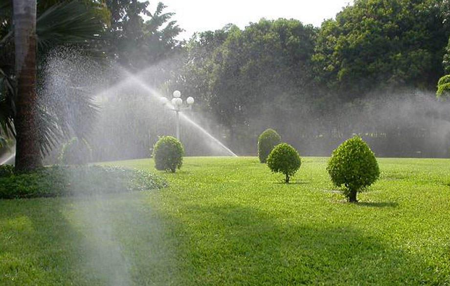 Como regar las plantas - Riego por aspersión