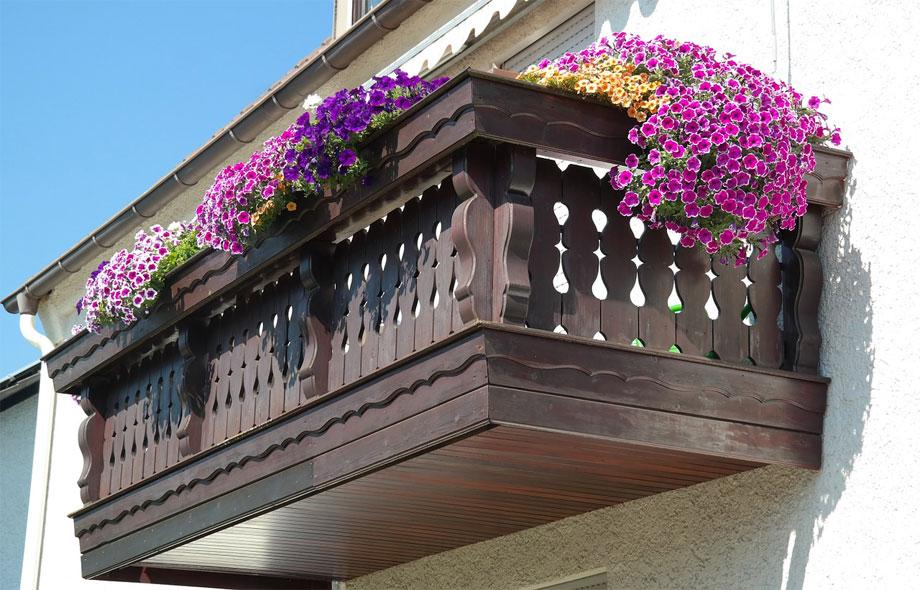 Petunias en balcón