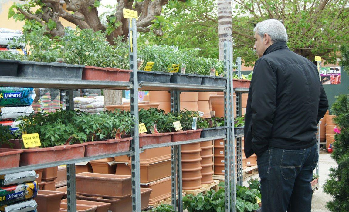 Planteles de hortalizas para balcones y terrazas