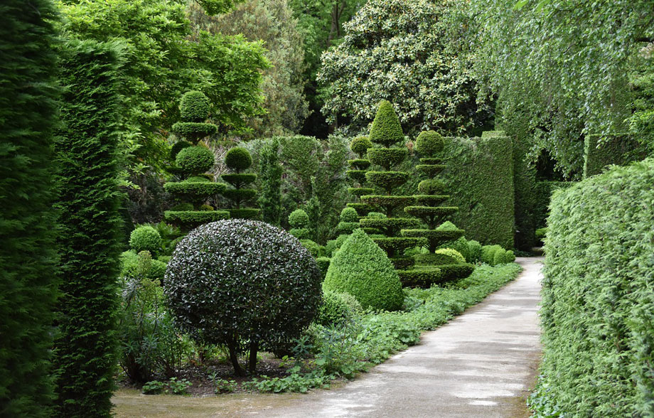 Poda arbustos y setos - Arte topiario