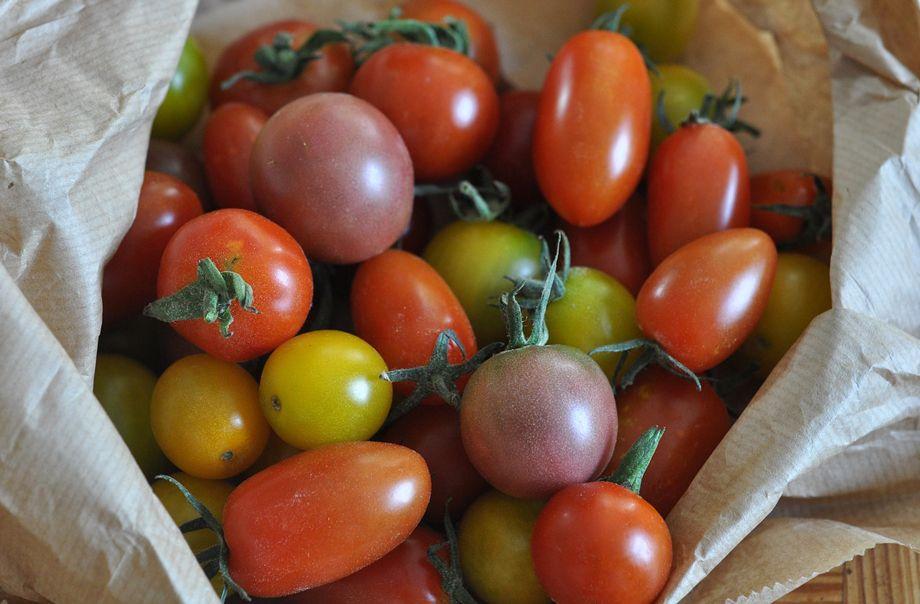 Tomates variados tipo cherry